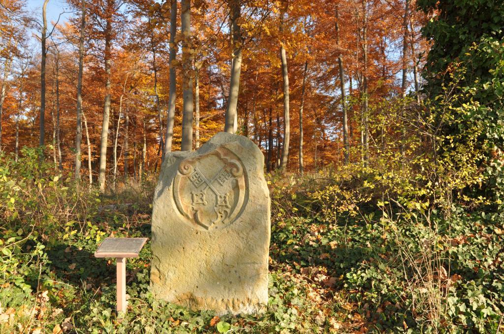 Grenzstein Hannover - Preußen am Stemweder Berg