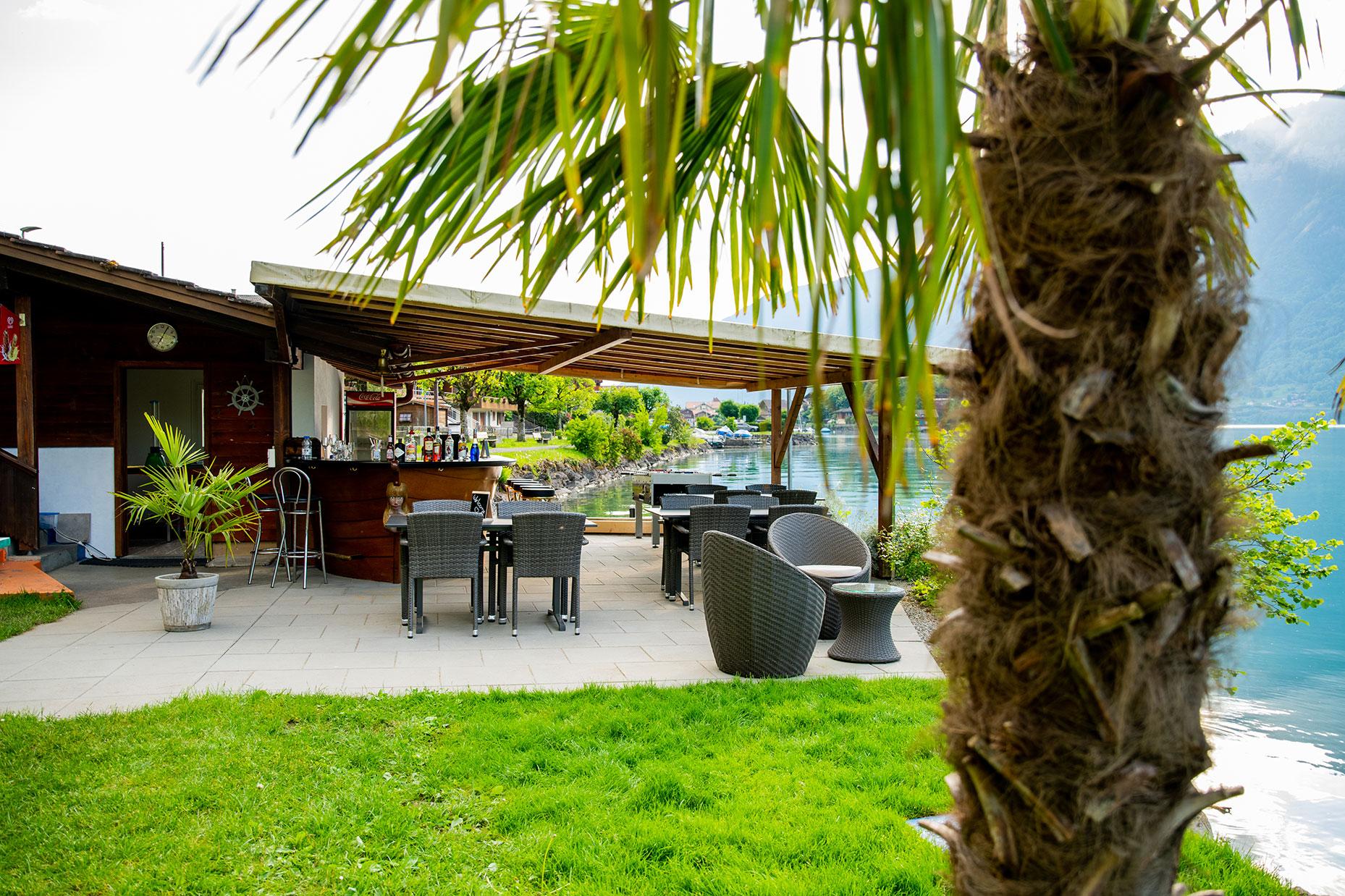 strandbad-iseltwald-terrasse-palme