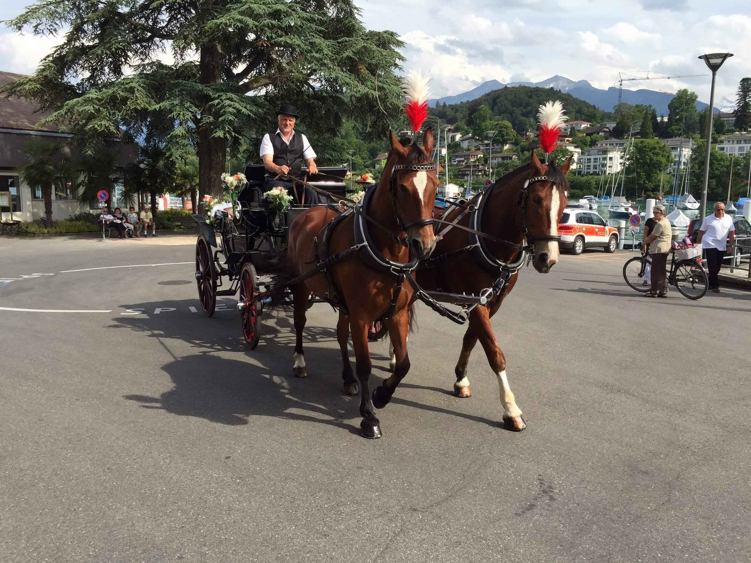 aeschi-kutschenfahrt-dorfrundfahrt-sommer-pferde