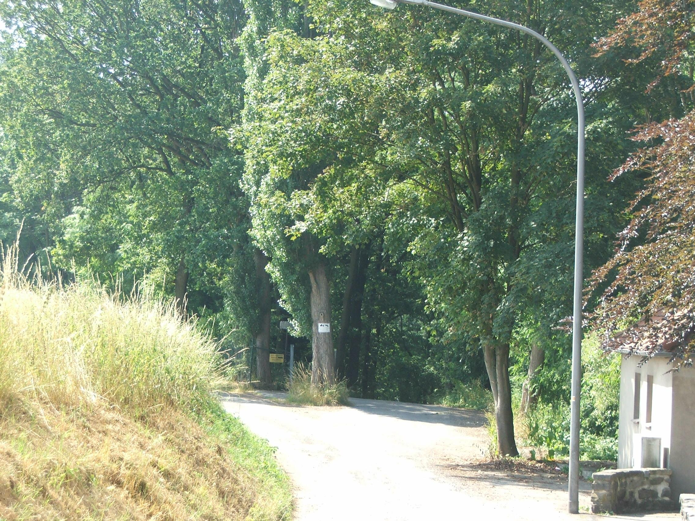 Alte Ottenhauser Straße