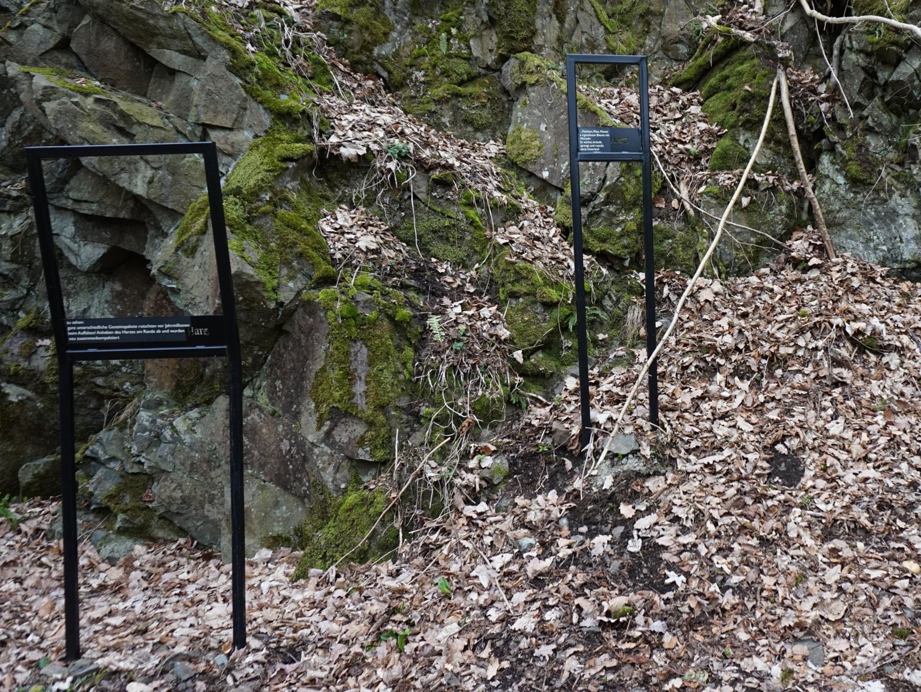 Geologische Einblicke am Harzer-Hexen-Stieg