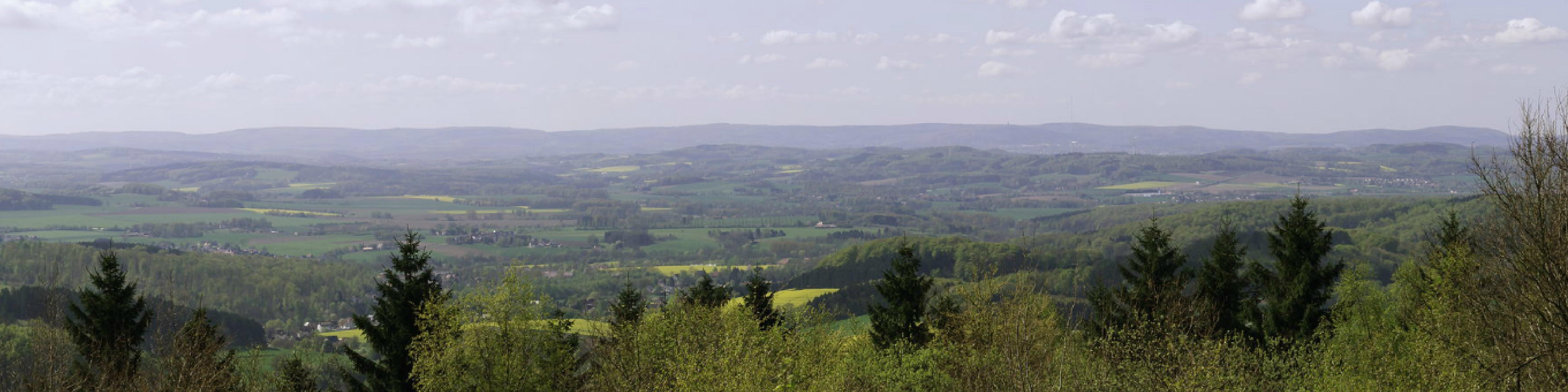 Blick vom Steinberg Richtung Süden