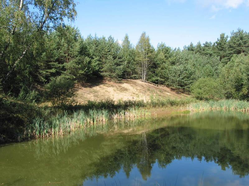 Naturschutzgebiet Boomberge