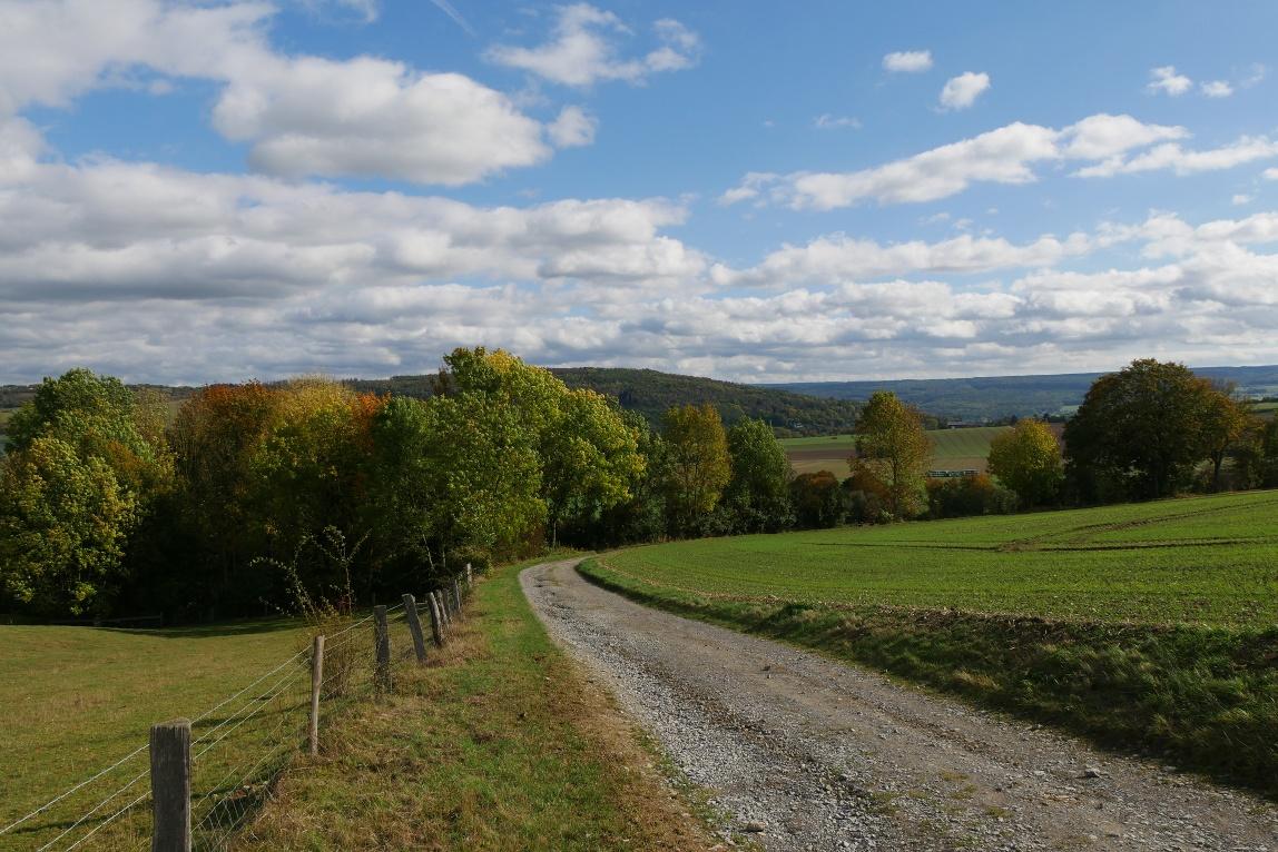 Wanderweg bei Brenkhausen