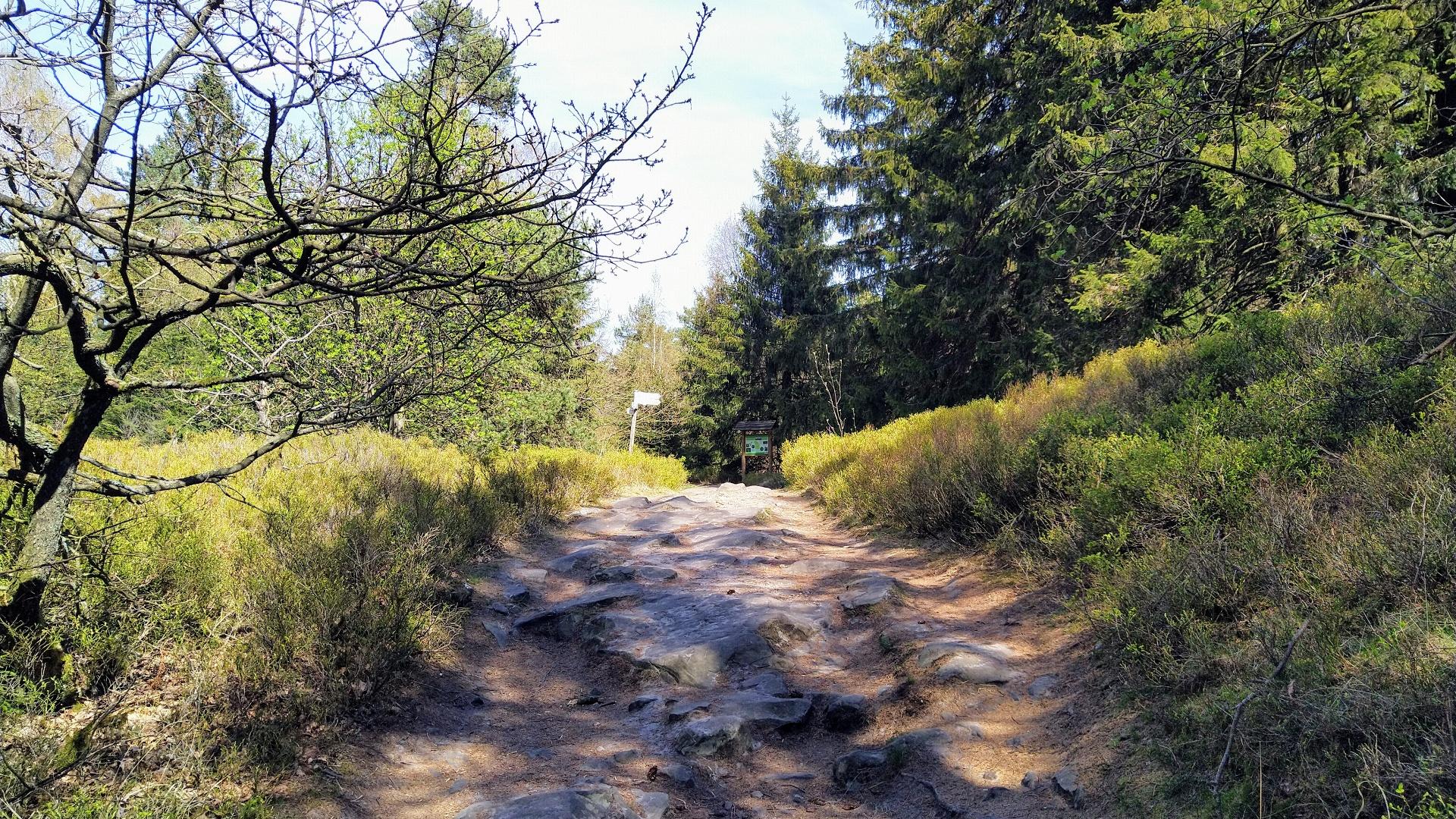 Wandern zwischen Preußischem und Lippischem Velmerstot