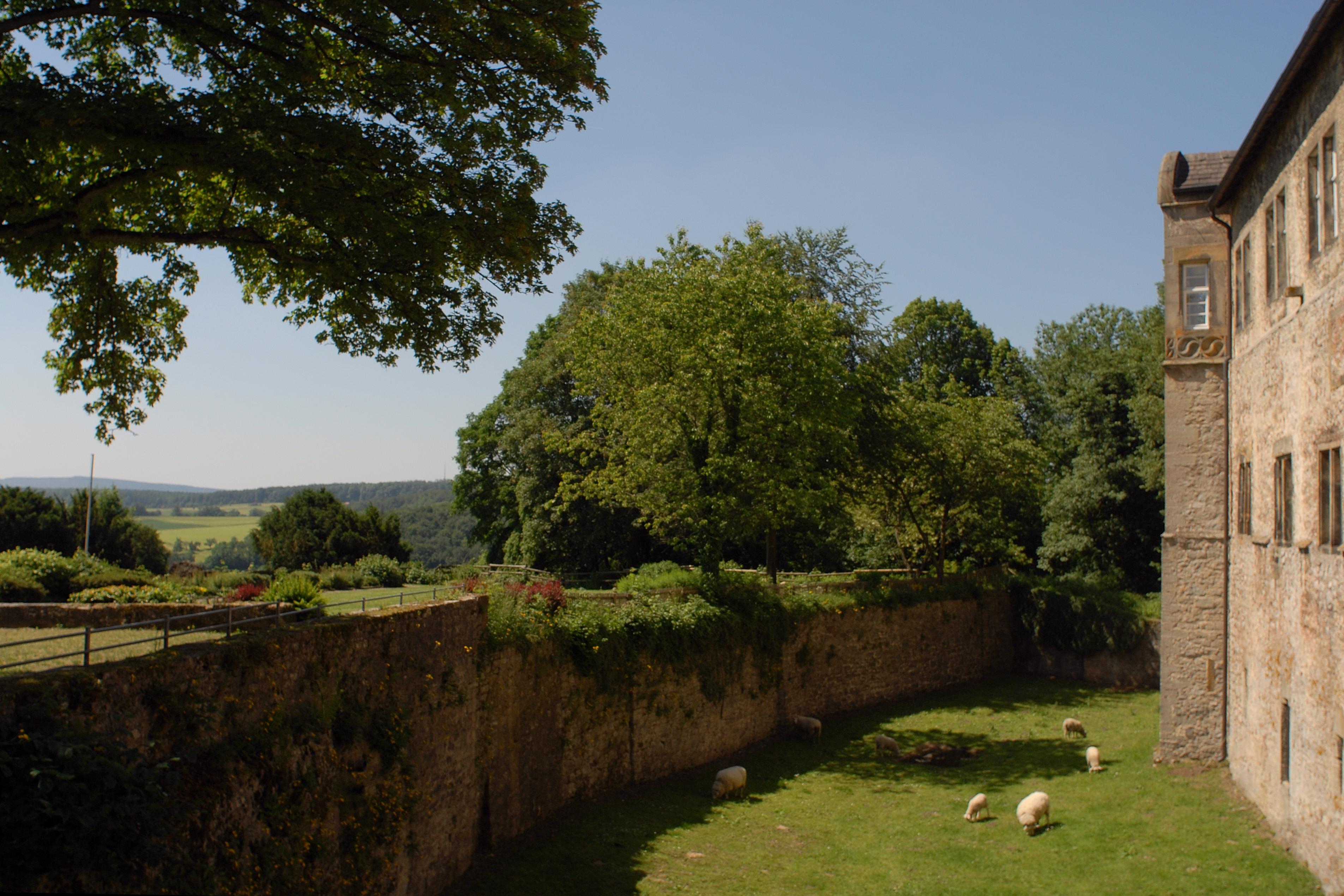 Burg Dringenberg Außenansicht