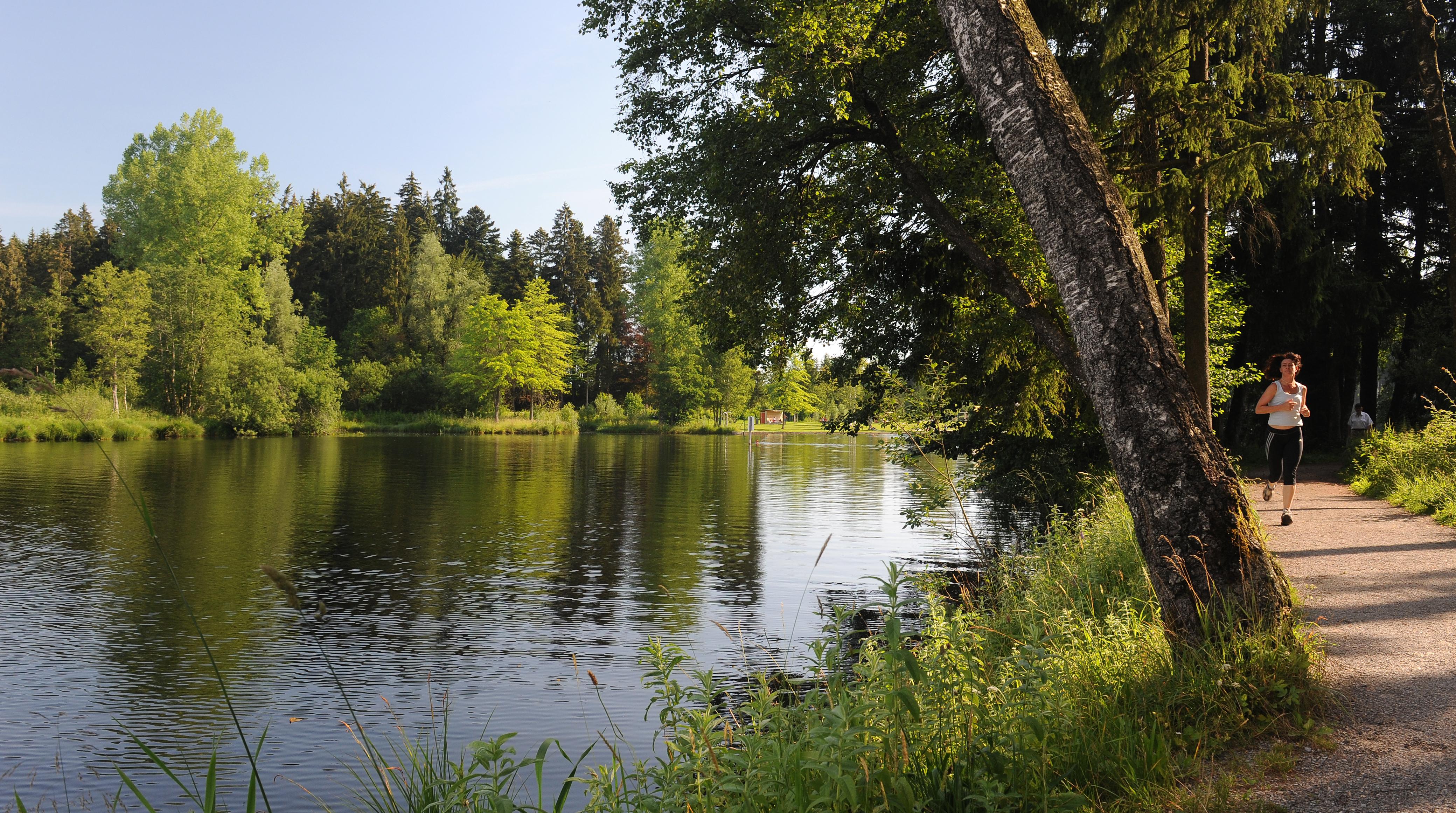 waldsee_joggen-thomasgretler