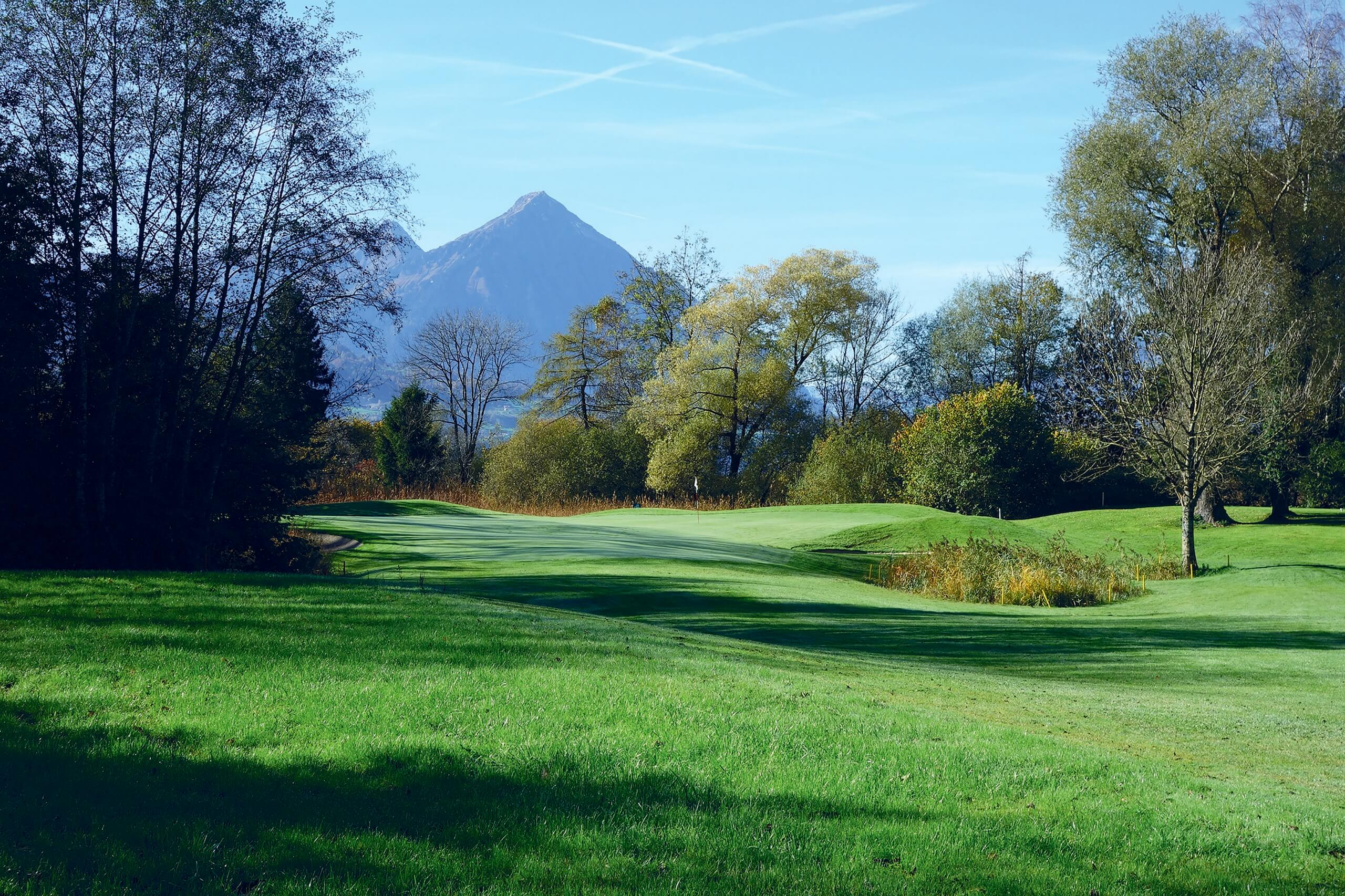 unterseen-golfplatz-sommer-baeume
