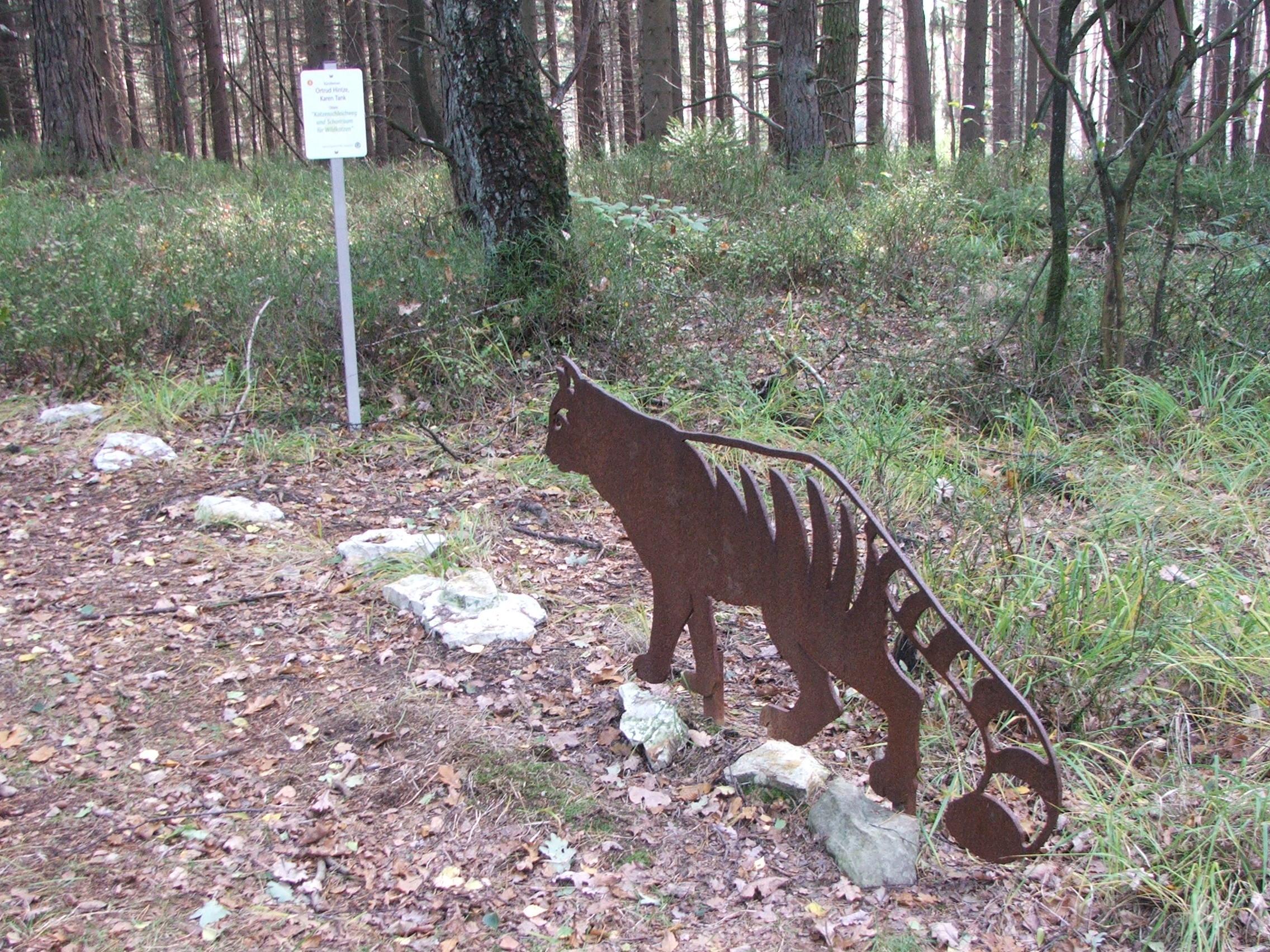 Schonraum für Wildkatzen