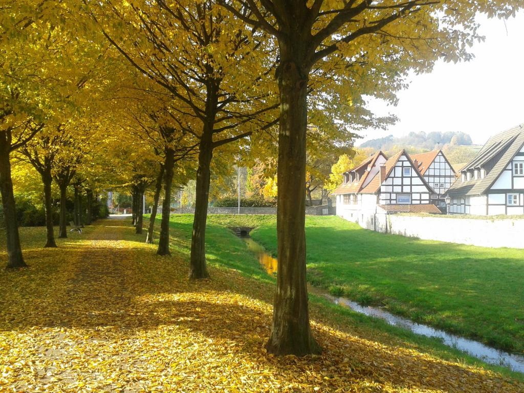 Stadtwall Lügde im Herbst
