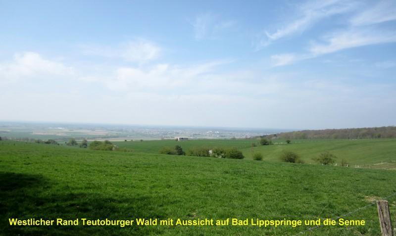 Westseite Teutoburger Wald
