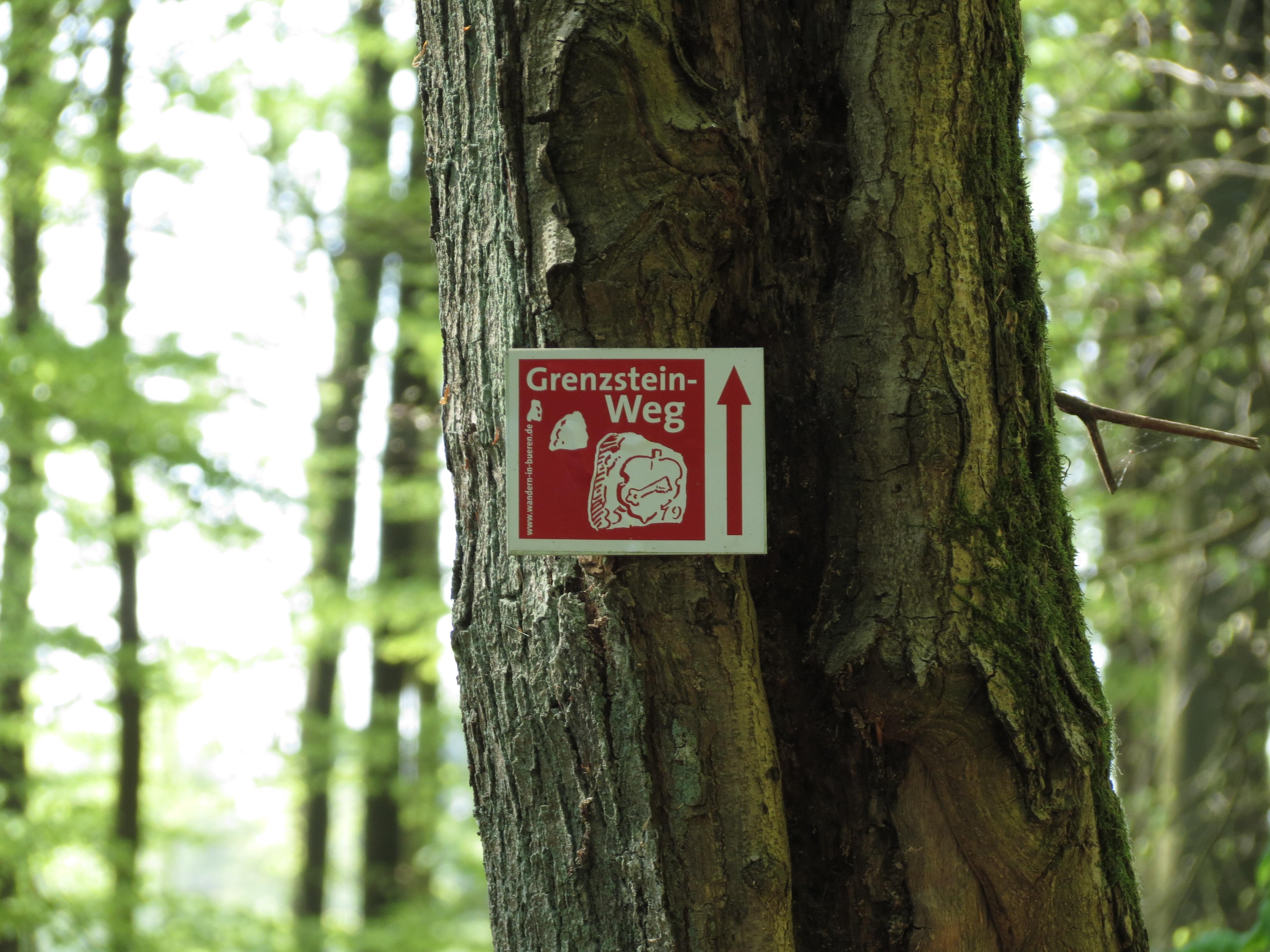 Sehr gute durchgehende Kennzeichnung des Wanderweges
