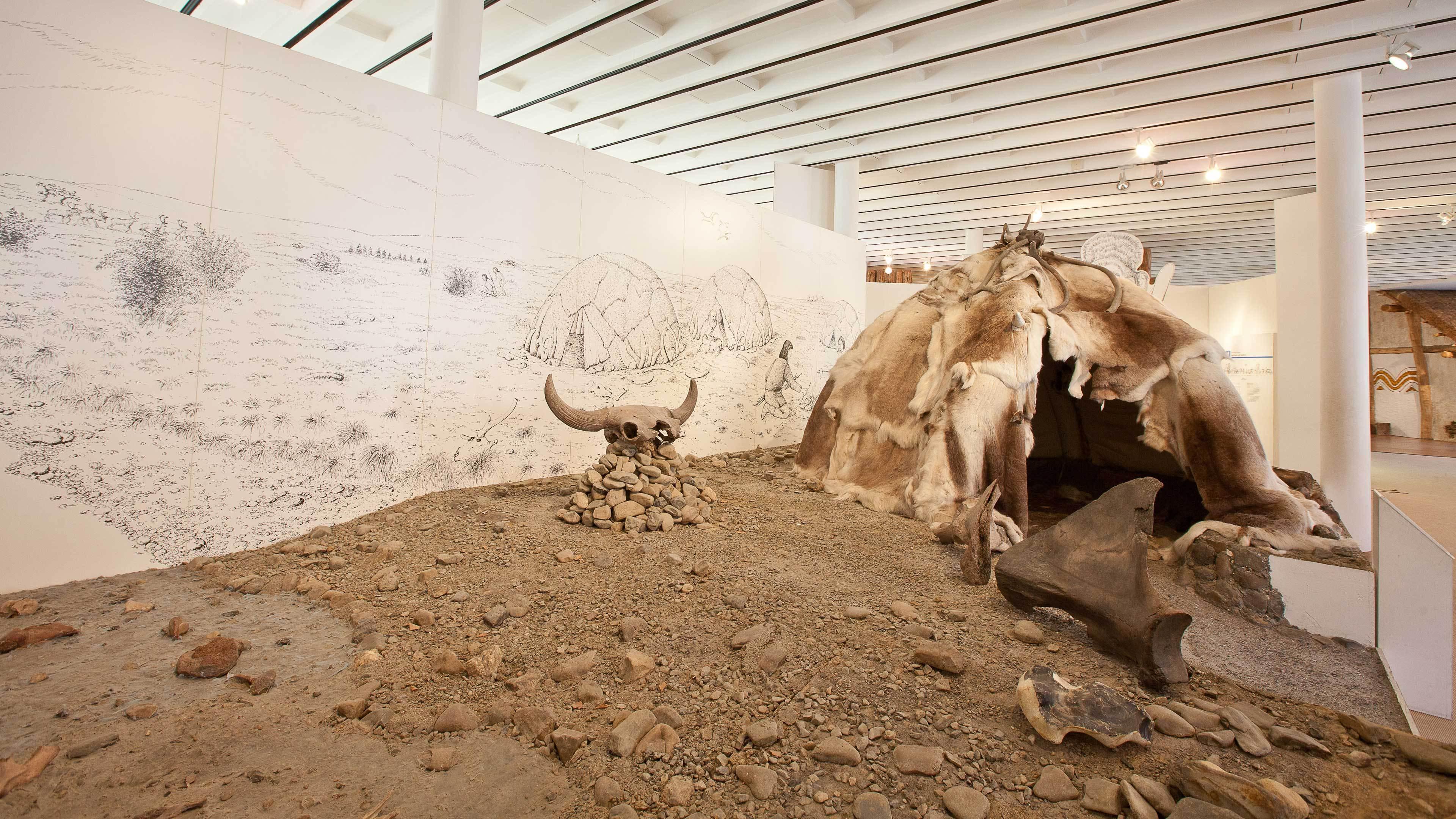 Archäologie in der Kanzlei