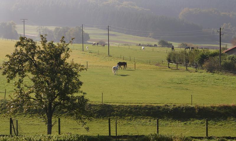Halle Westfalen, Ascheloher Schweiz