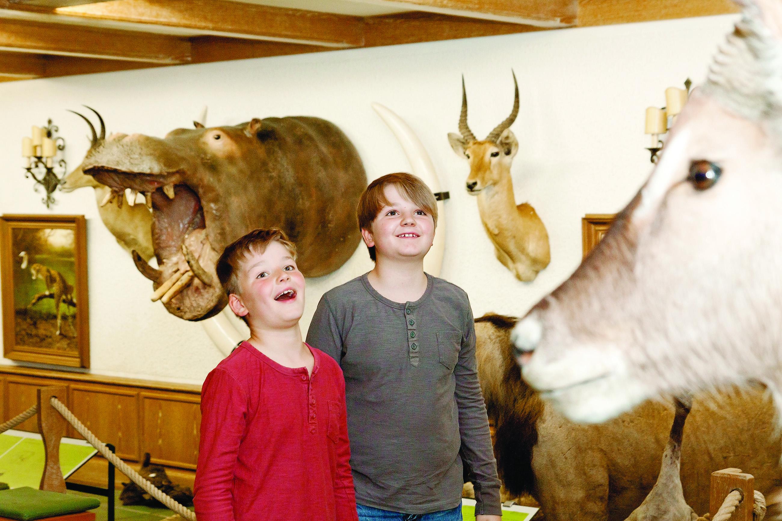 Afrikahalle im Jagdmuseum