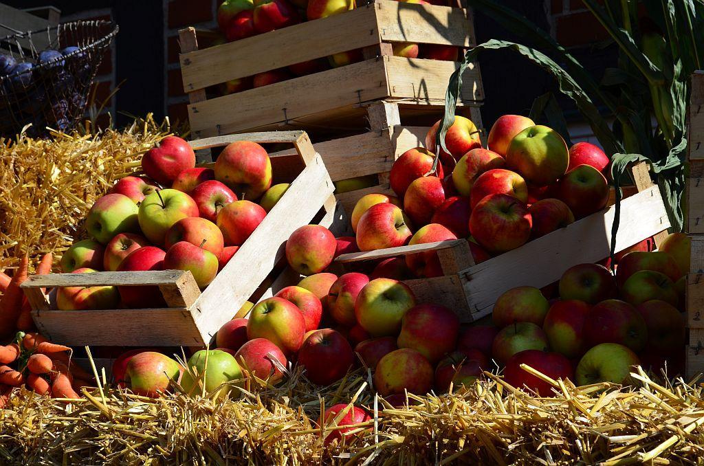 Äpfel aus der Region