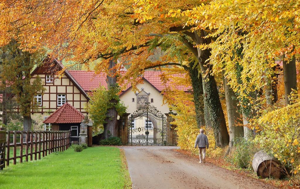 Zufahrt Schloss Crollage im Herbst