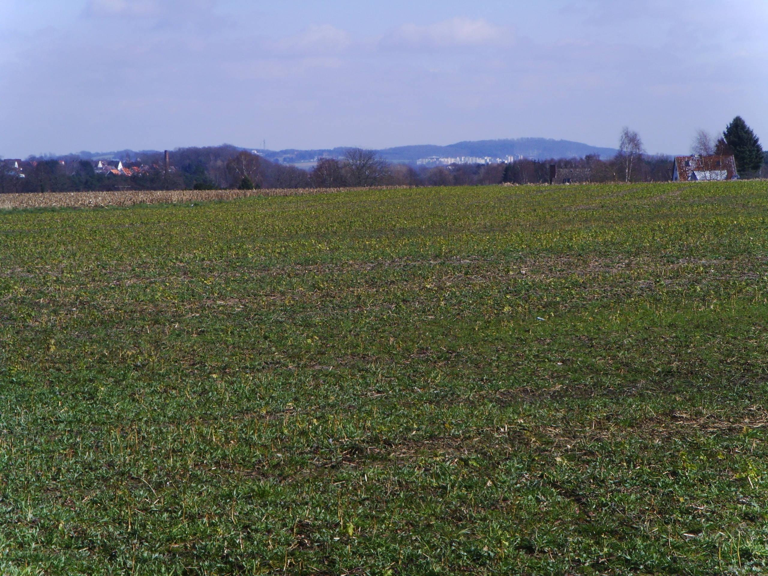 Panorama A1