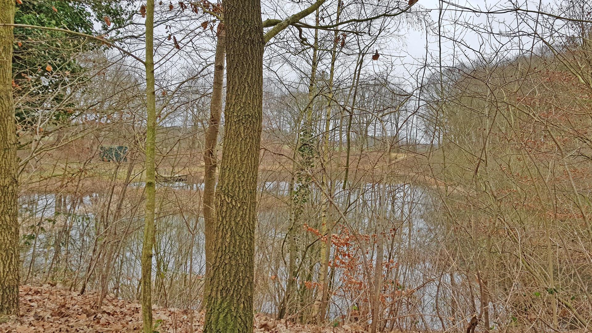 Leicht versteckt - der Oereler See