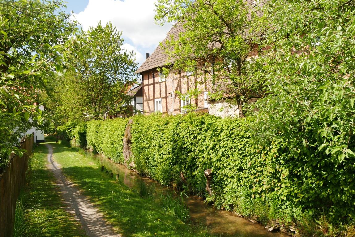 Mühlengraben in Bellersen