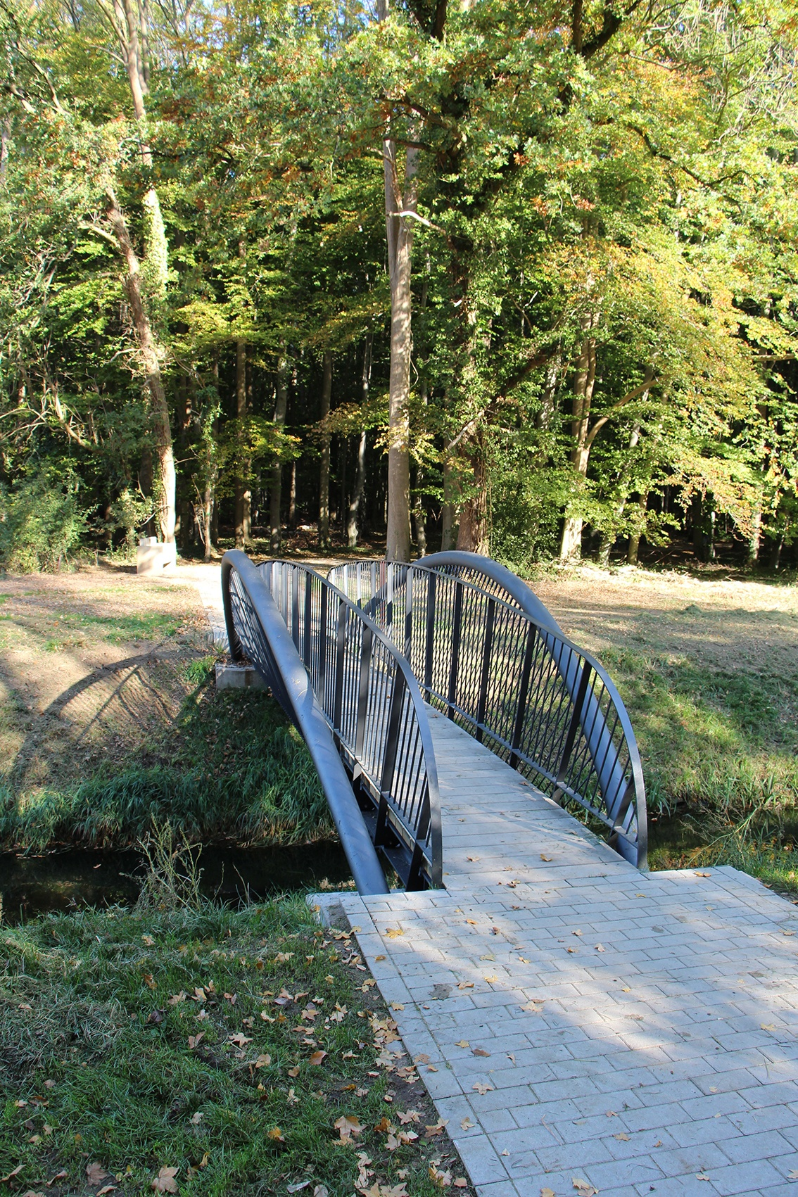 Verschiedene Brückenkonstruktionen am Weg